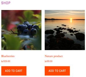 Adjusted-WooCommerce-Shop-page