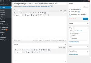 Excerpts tinymce visual editor