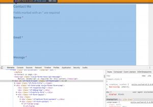 Ninja-Forms - HTML and CSS of default form seen in Inspect code view