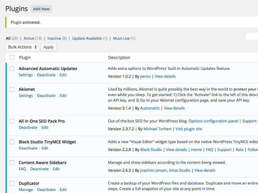 Installed plugins WordPress